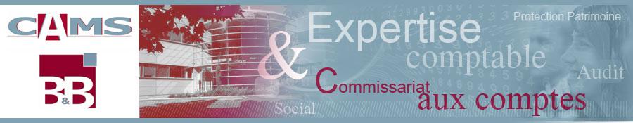 Cams: société d'expertise comptable Ordre régional Paris